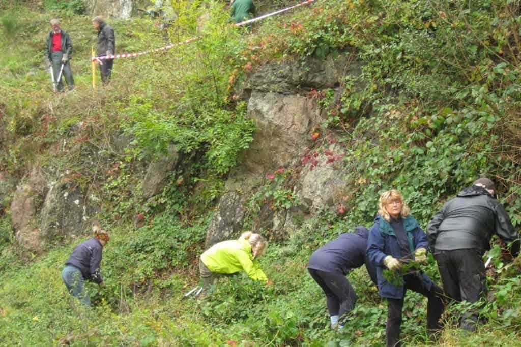Cleaning up the Malverns