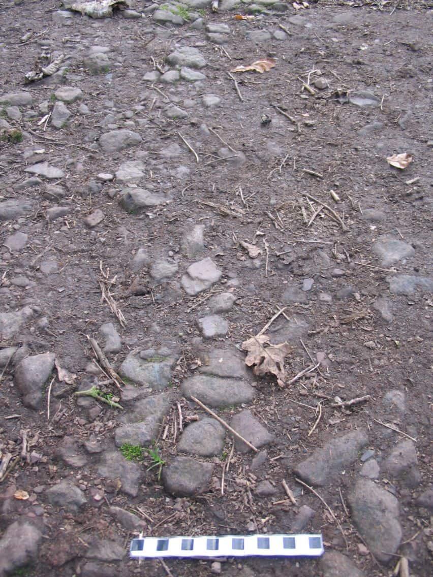 Permian Haffield Breccia